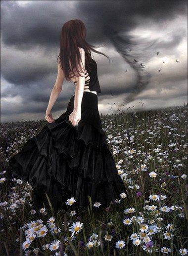 Dark Wishes, Night Magic