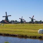 20180625_Netherlands_536.jpg