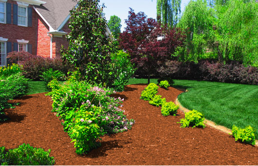 A Color Specialist In Charlotte What Color Mulch To Choose