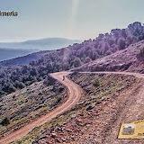 XXII KDD Sector Trail Almería - 1 Junio 2014