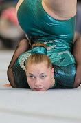 Han Balk Fantastic Gymnastics 2015-2072.jpg