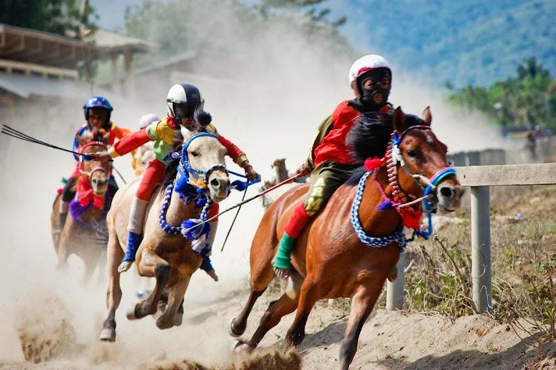 Tradisi Kuda Pacu di Indonesia