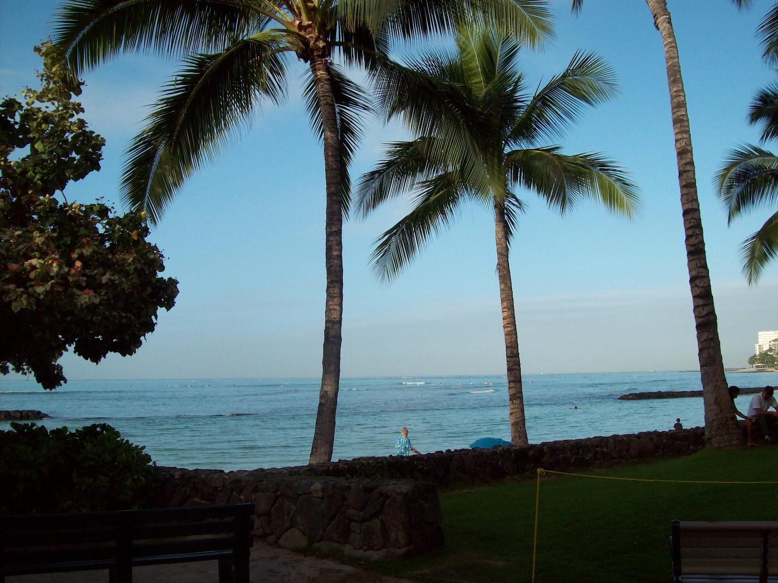 Hawaii Day 2 - 114_0889.JPG