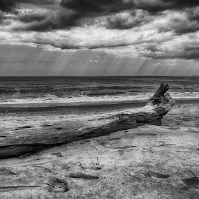 Alone by Massimo Grassi - Landscapes Beaches ( clouds, black and white, beach )