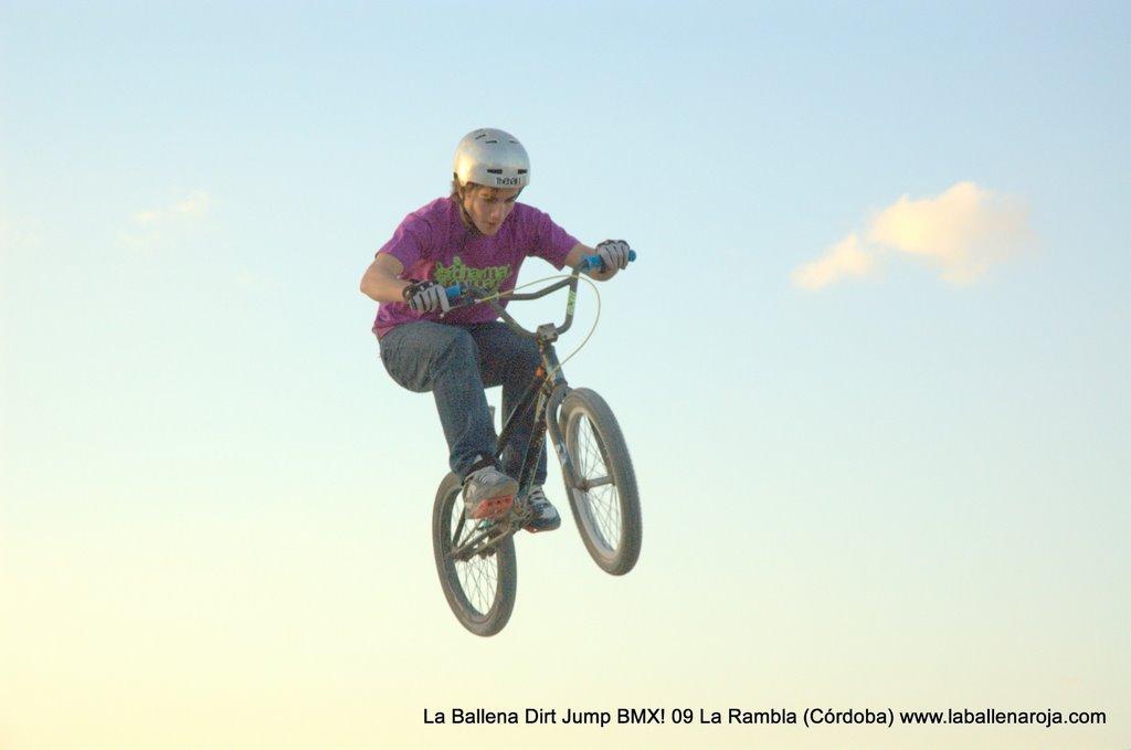 Ballena Dirt Jump BMX 2009 - BMX_09_0147.jpg