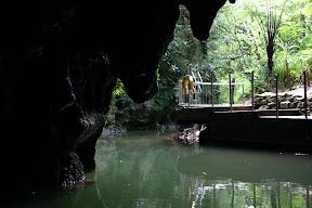 Waitomo Caves exit