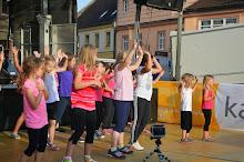 Stadtfest Herzogenburg 2014_ (5)