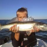 Estfishing.ee Pärnu kohapüügiretked