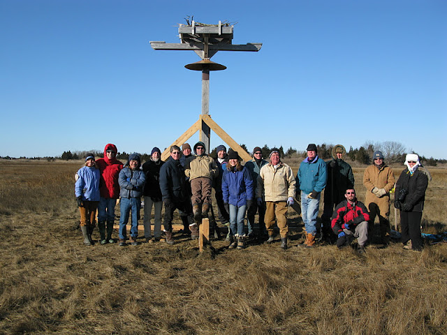 Osprey Platform - Jan 15, 2012 - IMG_8633.JPG