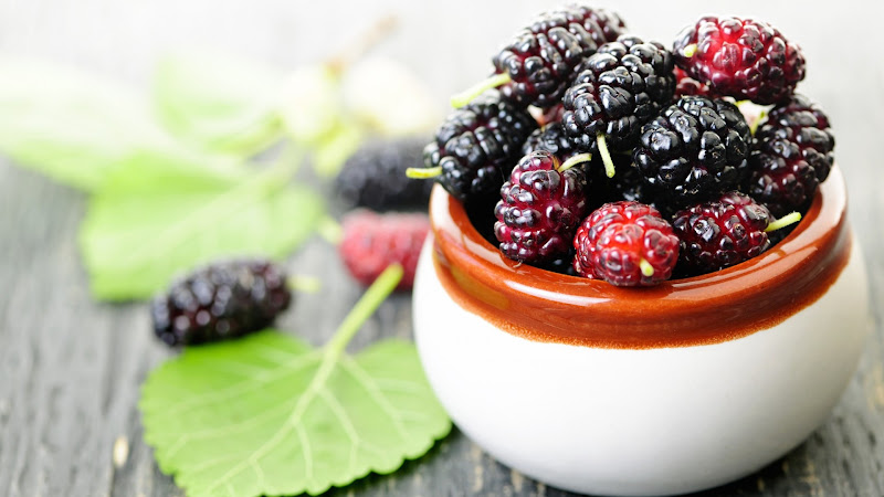 Mulberry Buah Hitam Mampu Susutkan Berat Badan