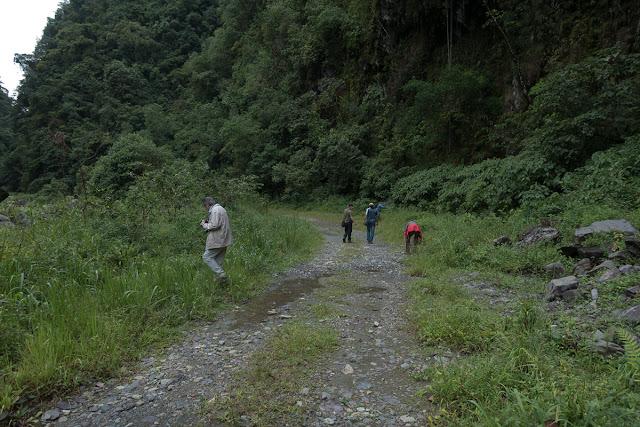 Campamento Las Moyas, 1100 m (Boyacá, Colombie), 16 novembre 2015. Photo : C. Basset