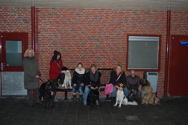 Jonge Hond centrum Emmen - 2012-04-01%2B057.JPG