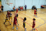 Juvenil NBA&CO - ClaretB