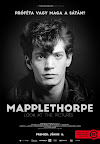 Robert Mapplethorpe - Mapplethorpe: Look at the Pictures (Fotó: Magyarhangya)