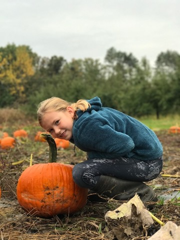 pumpkin picking at Lapacek's Orchard