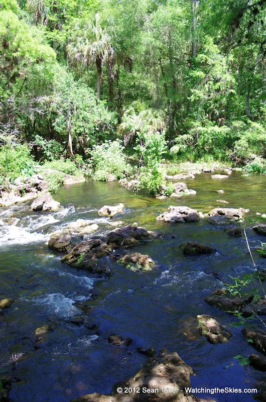 04-04-12 Hillsborough River State Park - IMGP9650.JPG