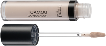 4010355282750_trend_it_up_Camou_Concealer_020