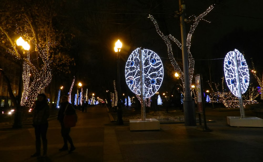 the parks are all decorated in Christmas lights!
