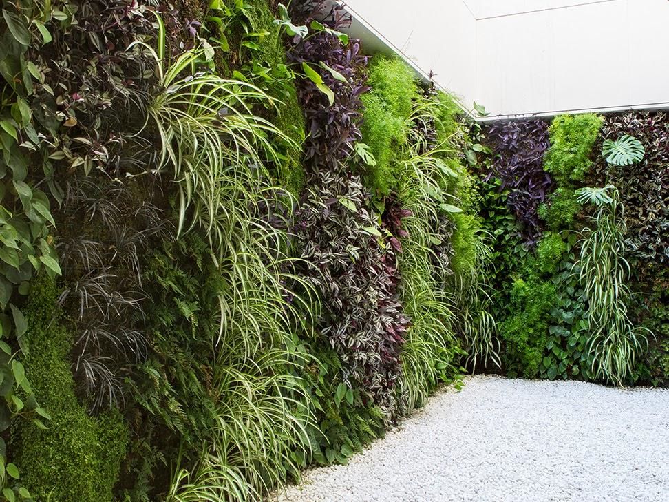 Jardines verticales de interior en Valencia