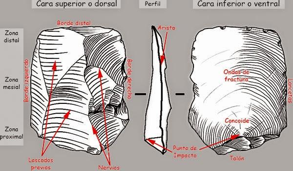 Partes de una lasca. Fuente: Wikipedia.
