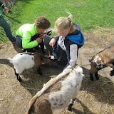 Welpen - Kinderboerderij & Crossbaan - IMG_2494.JPG