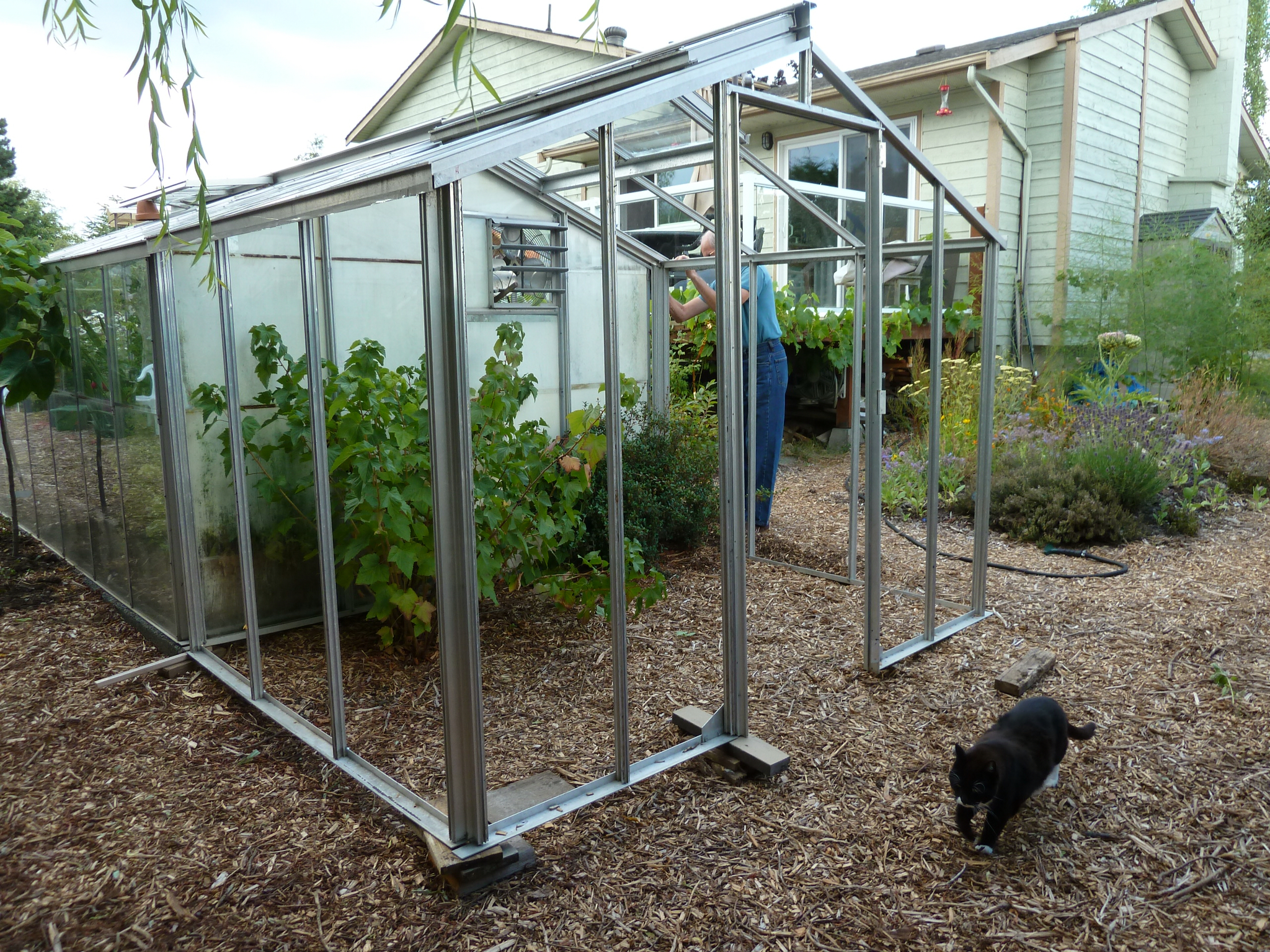 My home and garden an addition to my greenhouse oh joy for Better homes and gardens greenhouse