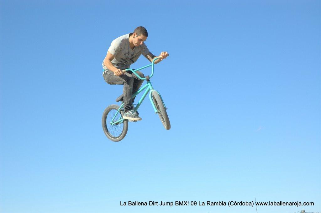 Ballena Dirt Jump BMX 2009 - BMX_09_0050.jpg
