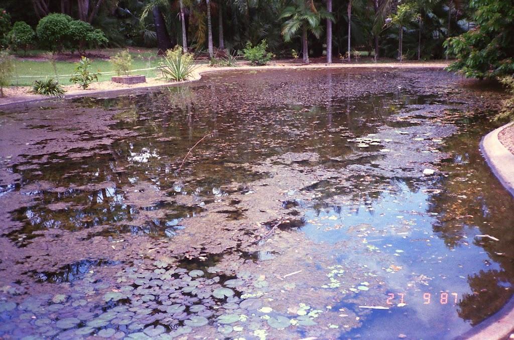 3170Darwin Botanic Gardens
