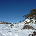 Rock Creek snowshoe walk (299761)