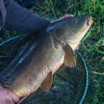 20150802_Fishing_Virlia_034.jpg
