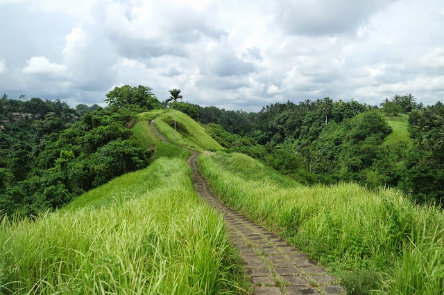 What To Do In Bali Ubud Bali Tourism Trekking in Bukit Campuhan
