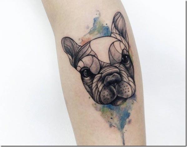 Este filhote de cachorro