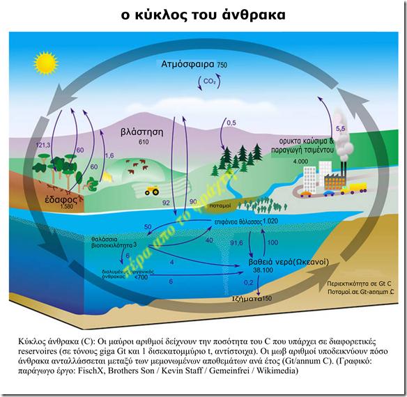 kohlenstoffkreislauf