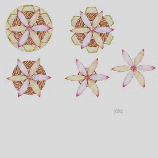 knip554.jpg