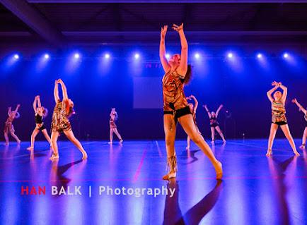 Han Balk Voorster Dansdag 2016-3647-2.jpg