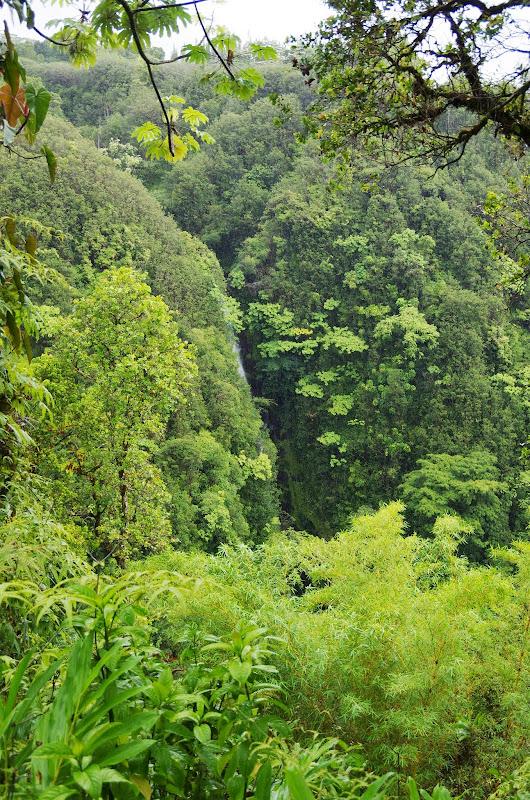 06-23-13 Big Island Waterfalls, Travel to Kauai - IMGP8847.JPG