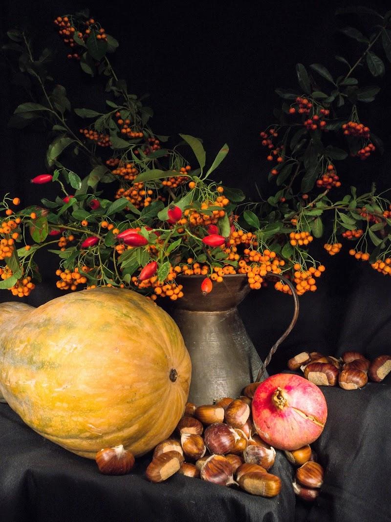Frutti e bacche di Arfios
