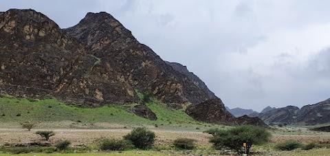 Al-Atikia ( فديت إلي مخلي عمره صلالة )