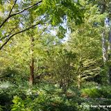 10-26-14 Dallas Arboretum - _IGP4314.JPG