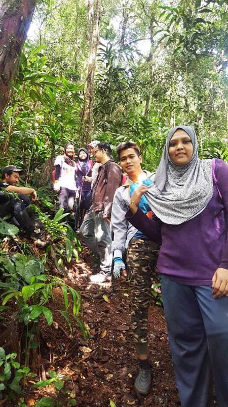 mendaki gunung siku mossy forest