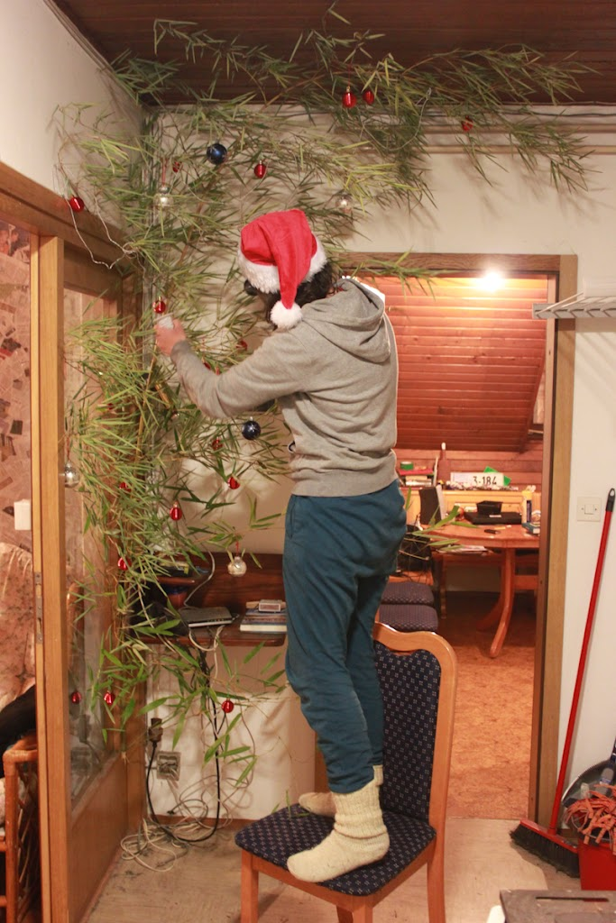 EVS Christmas tree - Vika-9658.jpg
