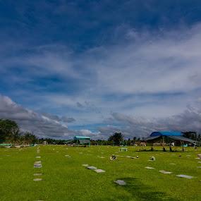 Resting Place.. by Marlon Diwata - City,  Street & Park  Vistas