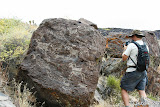 Lewis in front of a boulder covered in bighorn sheep petroglyphs.