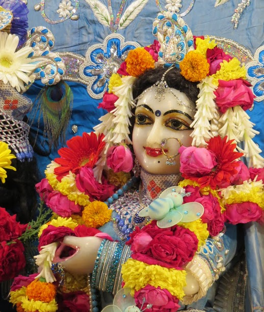 ISKCON Vallabh vidhyanagar Deity Darshan 18 jan 2017 (10)