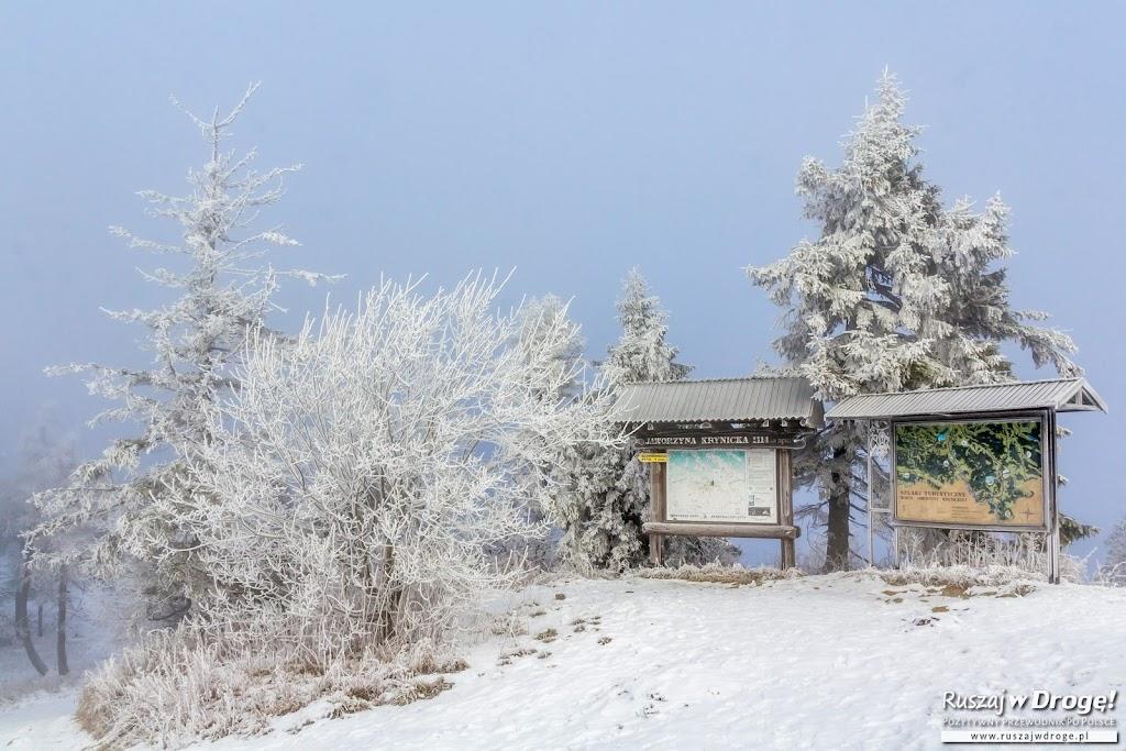 Zima na Jaworzynie Krynickiej