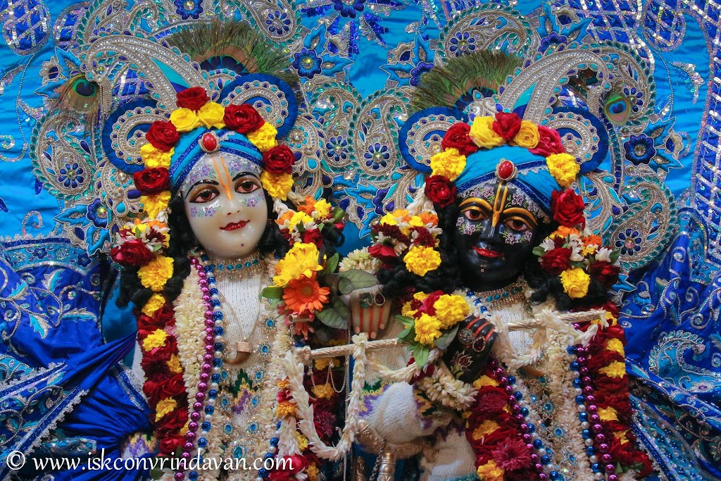 ISKCON Vrindavan Deity Darshan 10 Jan 2017 (2)