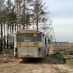 Помощь Воронежским лесам 004.jpg