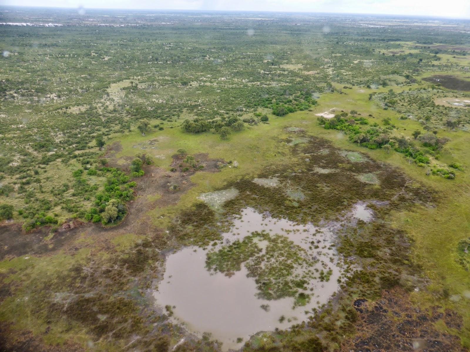 Okavangodelta uit de lucht.jpg