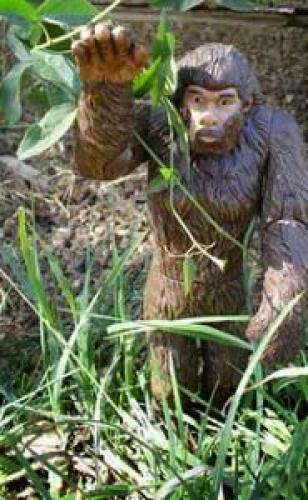 Is Bigfoot Flesh And Blood