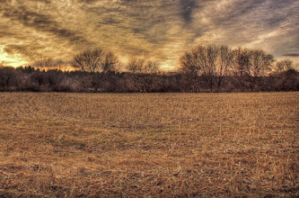 Photo: Dormant Field at rest. Westborough, MA #365Project curated by +Simon Kitcher